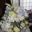 お友達からきれいなお花が届きました。