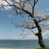 湖南?からの空 by 空倶楽部(148)