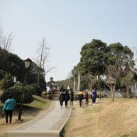 蘇州 木読の霊岩山