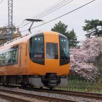 2017  桜と近鉄特急