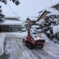 おおお雪、そして籾摺りコンプリート