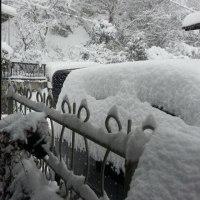 我が家も大雪よ~~