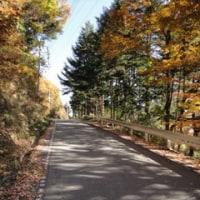 山梨~静岡・・・富士山と紅葉を愛でるツー