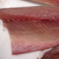 DHA&EPA「青魚」シリーズ♪「生ら(なまら)〆さば」「生ら(なまら)〆サンマ」「トロにしん」「真あじ」!!発寒かねしげ鮮魚店の魚屋しげ。