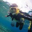 水納島でシュノーケルや体験ダイビング