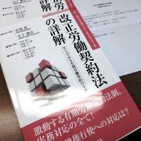 『改正労働契約法の詳解』