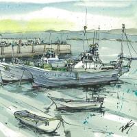 真名瀬漁港(葉山)