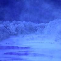 早朝時氷点下23℃のタンチョウ鶴塒。