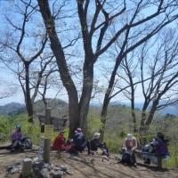 【ガイド】奥多摩の春をめぐる③/棒ノ折山1