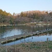 みのわだ湖に行ってきた。風刃太郎さんと一緒