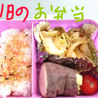 lunchBOX