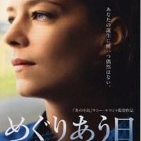映画「めぐりあう日」―北フランスの港町に母親のまなざしを求めて彷徨う女性の光と影―