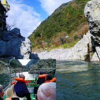 四国四県ぐるり旅 大歩危峡~祖谷渓(かずら橋)