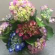 今週のお花184