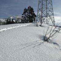 新潟県魚沼市「大力山」2017雪山遊び~きのこ狩り