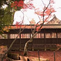 2016・晩秋の本土寺