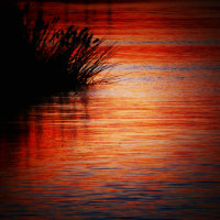 『朝景』 冬の川