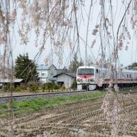 4月22日撮影 その6 小海線はEast-i Dと枝垂れ桜