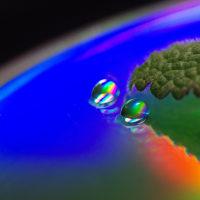 水滴の写真24