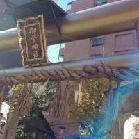 御金神社(・ω・)ノビシッ