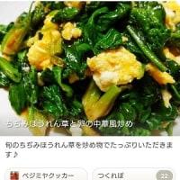 昨年度「旬の野菜&果物おすすめレシピ」最多アクセスレシピ一挙ご紹介!!