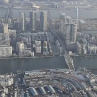 築地 数十カ所で基準超有害物質・・・・移転しないツケは大きすぎる