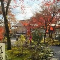 京都  2日目