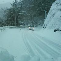 国道439号・東祖谷の積雪は20cm近い場所も!
