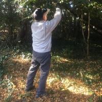 1月7日 活動報告2 椿の競演
