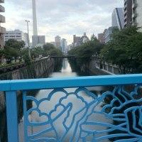 92才の介護ダイアリー、東京共済病院は都市病院では有数の景勝地、一帯は江戸の