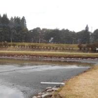 2015 11/10(火)