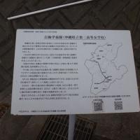 27.南部随一の桜の名所八重瀬城跡