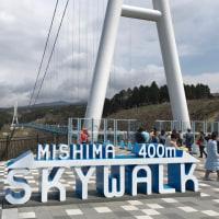 富士山・箱根・静岡の旅