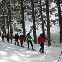百里ヶ岳へ17人のスノーシュー隊