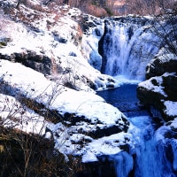 凍てつく多留姫の滝