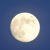 明日の月はブルームーン