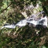 セローで和歌山~和泉界隈の林道ツーリング