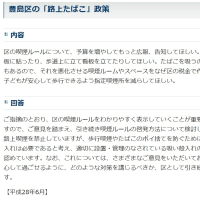 豊島区「路上たばこ」政策