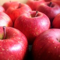リンゴ1個で医者いらずは本当だった
