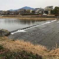 京都グルメ旅