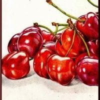 色鉛筆画348 (アメリカンチェリー)
