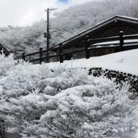 牧ノ戸峠‥その2(撮影旅行②)