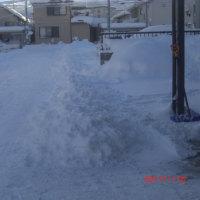 もう~勘弁してよ!・・・雪、雪