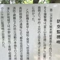 中野山散歩