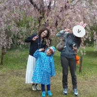松前公園たっぷり2時間と五稜郭公園・北斗桜並木酔いしれる 道南さくら名所めぐり2日間の巻