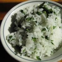 山菜尽くしの朝飯。
