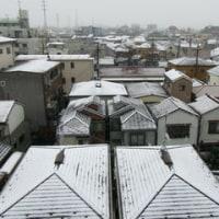 日本語教室ともだち 11月28日(月)の学習