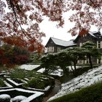 旧古河庭園 紅葉に雪・・1