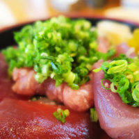 寿司割烹 木挽町 佃屋@中央区銀座 「ねぎトロ鉄火丼」
