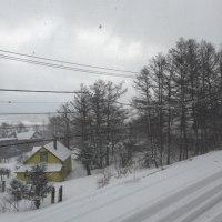 ただいま雪☃️です